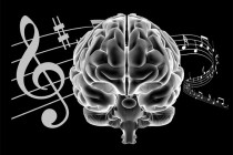 Image result for academics and music
